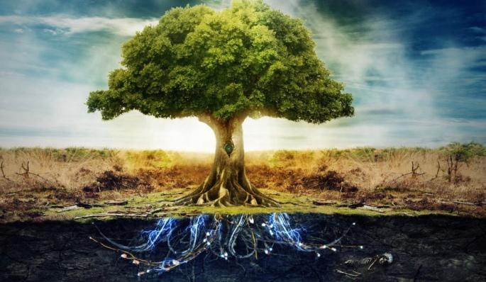Fiamma divina la fiamma presente in ognuno di noi - La fiamma gemelli diversi ...